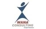 Wana Consulting
