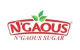 N'GAOUS Sugar SPA